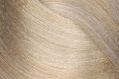 10-16 lightest ash vioet blonde