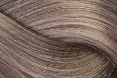 12-11 special blonde intensive ash
