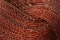 6-4 rich autumn red brown